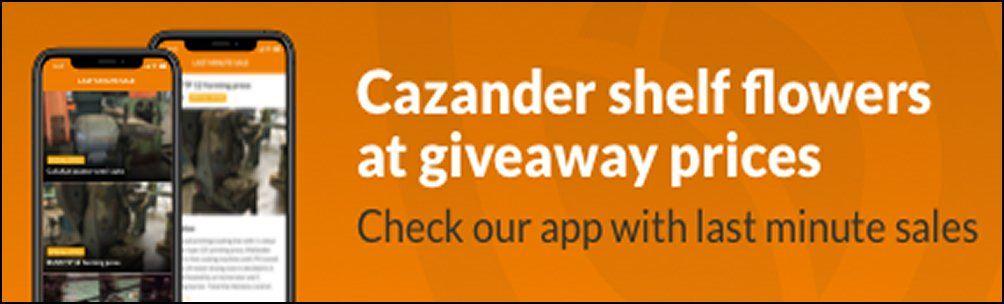 Cazander banner1
