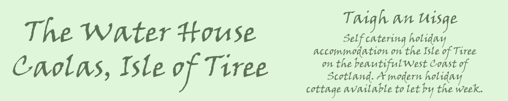 The Water House, site logo.