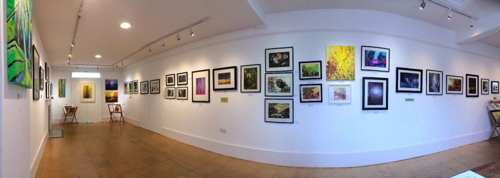Birdwood House Solo Exhibition1.jpg
