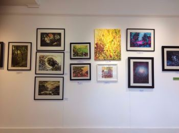 Birdwood House Solo Exhibition2.jpg