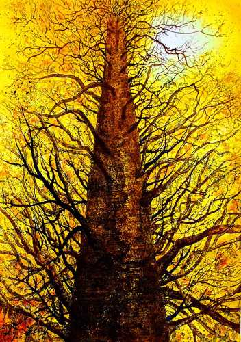 Arbre D'or FRAMED PRINT