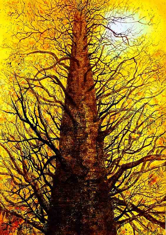 arbre dor