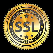 SSL 100% secure transactions seal
