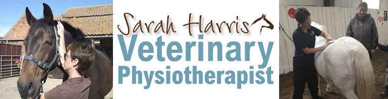Sarah Harris Veterinary Physiotherapist, site logo.