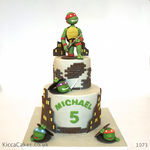 1073 ninja turtle birthday cake