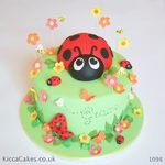 1098 ladibug kids cake