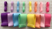 "3/8"" & 2"" New Rainbow 2 Grosgrain Ribbon Bundle"