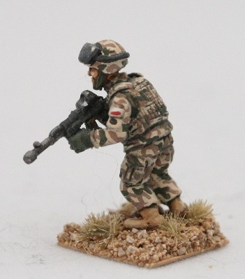 LTD06 Modern Polish Army