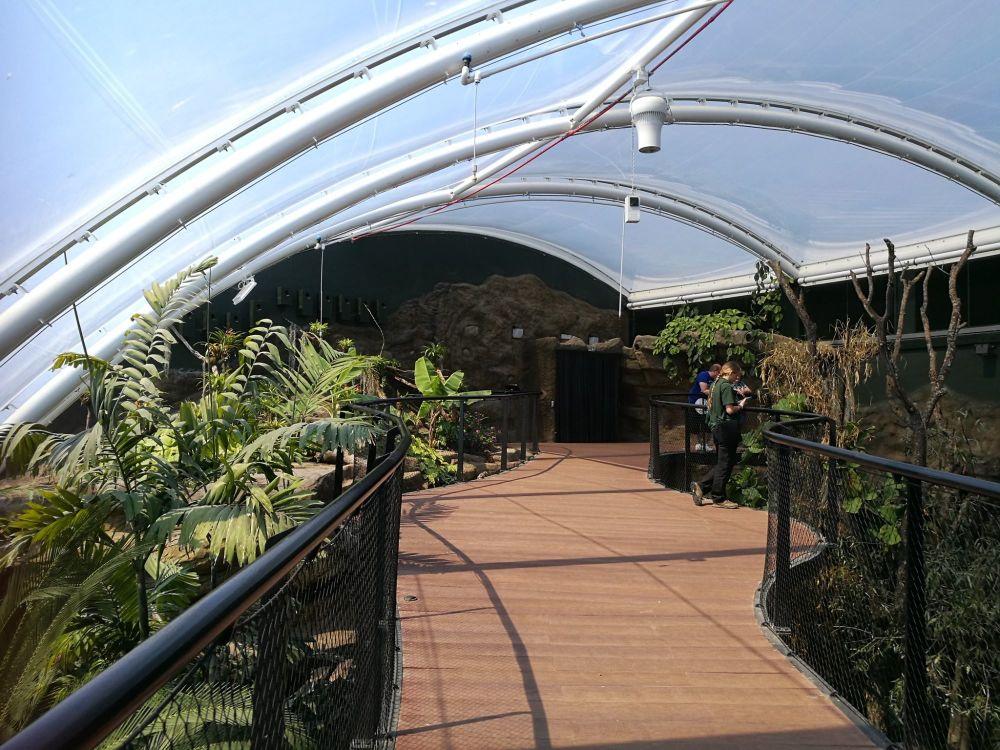 Marwell Tropical House 4