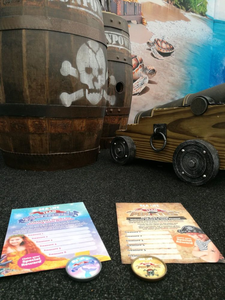 Sealife Pirates and Mermaids June 2
