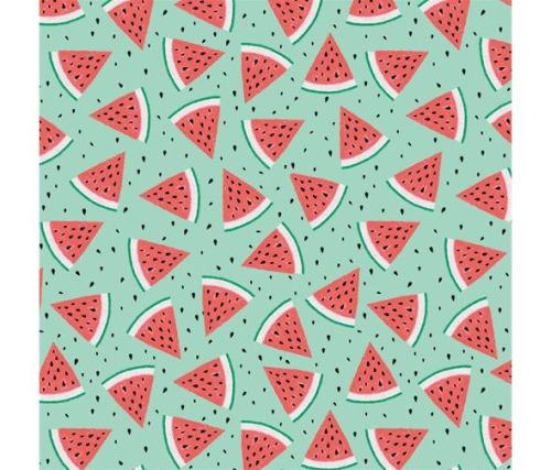 Summerlicious Watermelon by Studio E Fabrics 100% Cotton