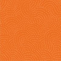 Twist - Pumpkin by Dashwood Studio 100% Cotton