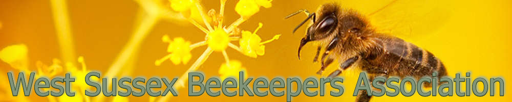 West Sussex Beekeepers Online, site logo.