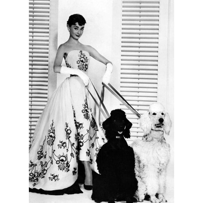 'Audrey Hepburn Film Still from Sabrina 1954' Greeting Card