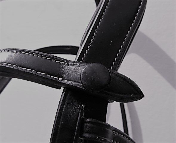 Browband fastened on bridle