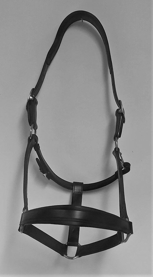 Leather Saturn Headcollar