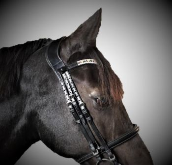 Anatomical Double Bridle