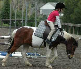 saddle slip pony