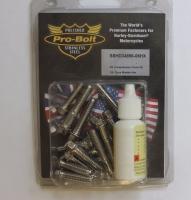 Pro Bolt Dyna Transmission Cover Kit Hex Bolts SSHD34856-06HX
