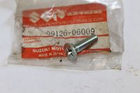 Suzuki RM80 RM85 DRZ125 Front Disc Screw (6x22) 09126-06009