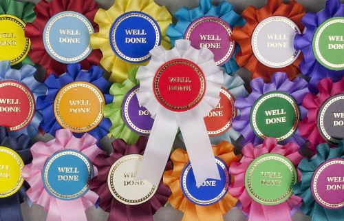 Mini Winner/Well Done/Clear Round Rosettes. Pack of 30 or 50 Assorted