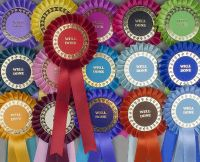 Classic Large 1-Tier Rosettes Pack x 30 or 50, Special/Clear Round/Well Done