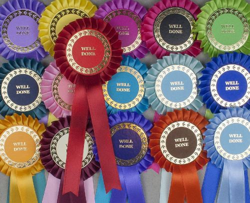 Classic Large 1-Tier Rosettes Pack x 30 or 50, Special/Clear Round/Well Don