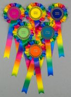 Rainbow Large 1-Tier Rosettes, Set of 6 Special, Well Done or Clear Round