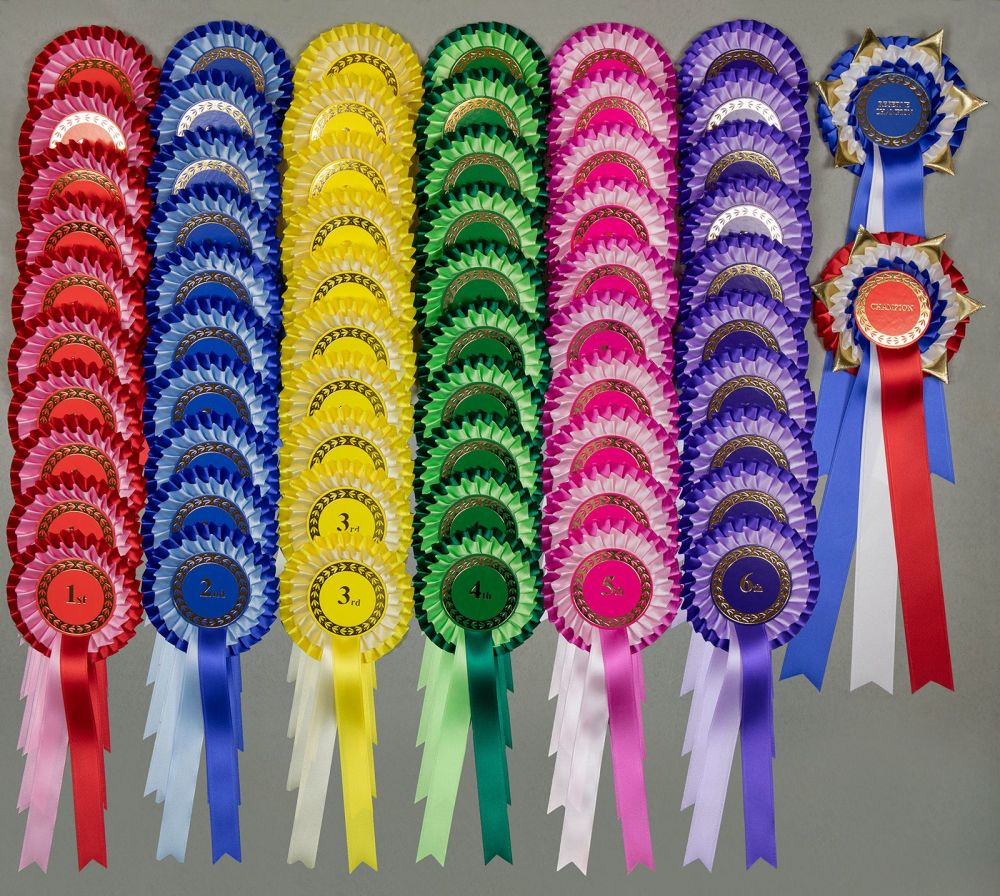 Complete Show Set, 2-tier Rosettes 10 Sets 1st-3rd, 1st-4th or 1st-6th +Ch/
