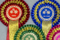 <!--001 -->CHRISTMAS ROSETTES - Click Here