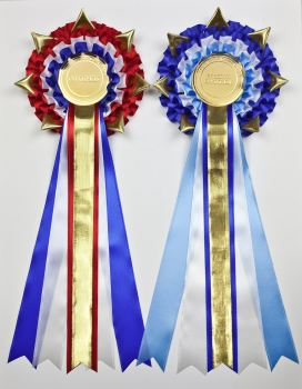 GoldStar Large Champion/Reserve or BIS/RBIS