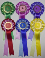 Large 2-Tier Rosettes, Wide Tails, Set 1st-6th