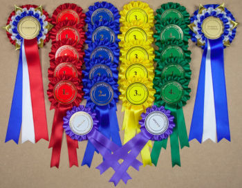 Complete Show Set - 44 LARGE Personalised Rosettes