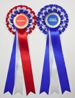 Set of Large Champion & Reserve/BIS & RBIS Rosettes
