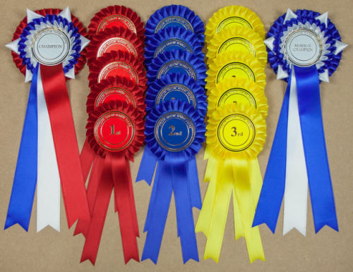 Complete Show Set 1 - 32 LARGE Personalised Rosettes 10 Sets 1st-3rd