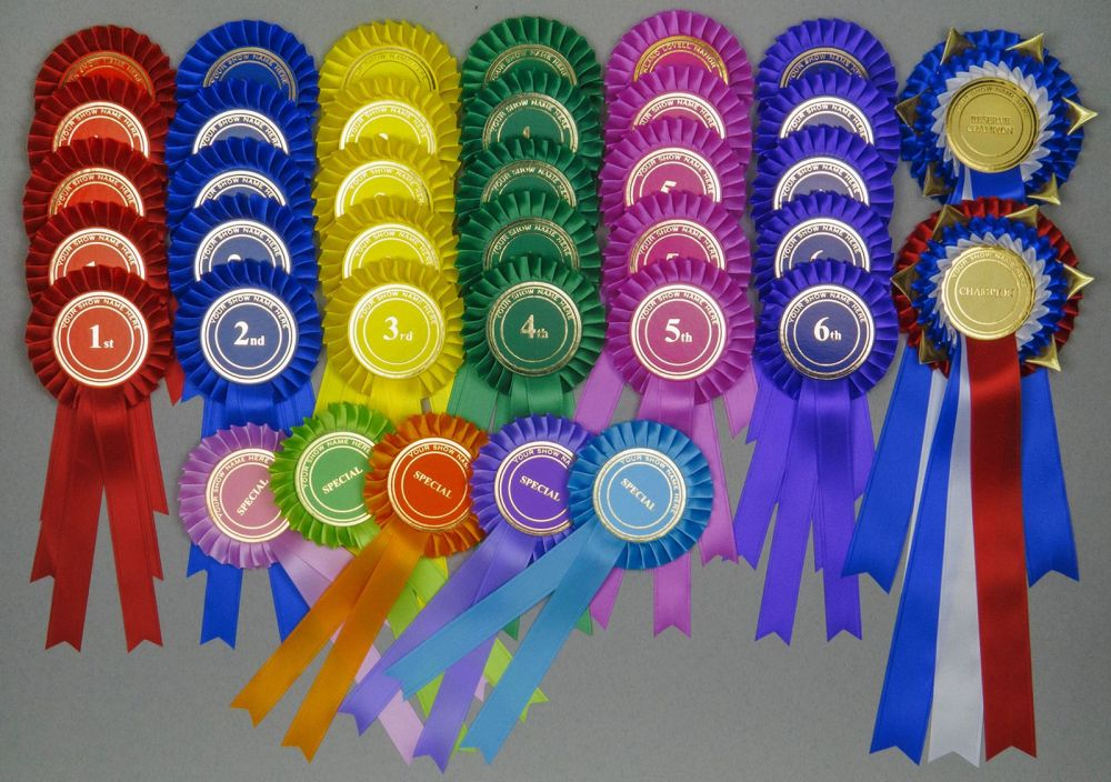 Complete Show Set - 67 Large Rosettes. 10 sets x 1st-6th