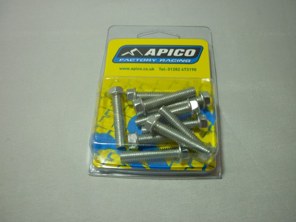 M6 FLANGED BOLTS PACK OF 10 6X30  (280)