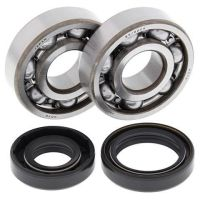 CRANK BEARING AND SEAL KIT 24-1008 (691)