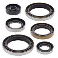 ENGINE OIL SEAL KIT VERTEX 822110 (725)
