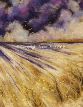 NEW - Violet Flight
