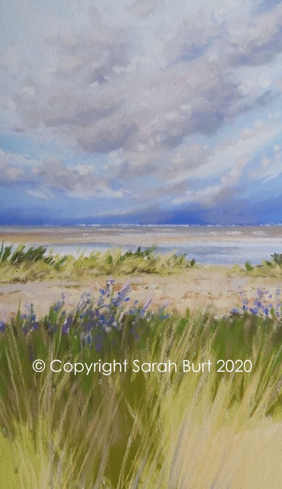 New Pastel - Snettisham Coastal Path