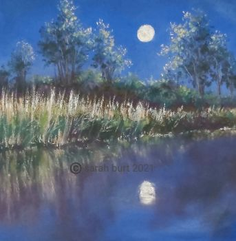 Riverbank by Moonlight