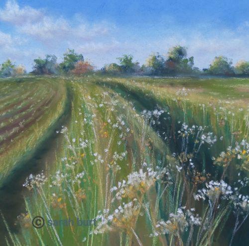 Between the Fields