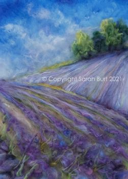 The Copse Atop the Lavender Fields
