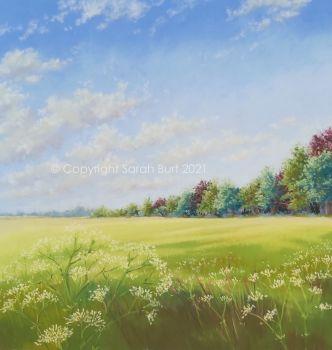 New Pastel -  Summer Field's Edge