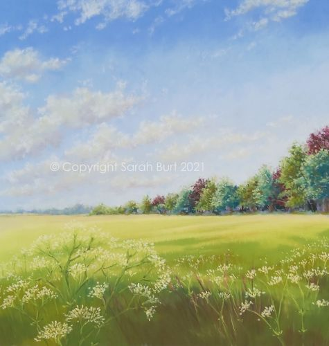New Pastel -  Summer Field's Edge (Collection in Person Only)