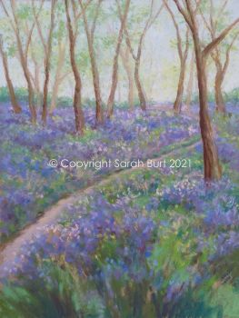 New Pastel - Bluebell Path