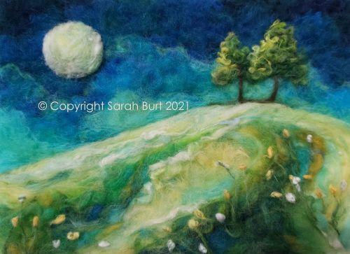 Meadow by Moonlight