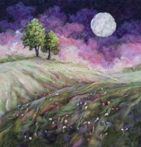Moonlit Meadow in July