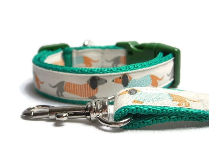 DACHSHUND COLLAR & LEADS - 20mm